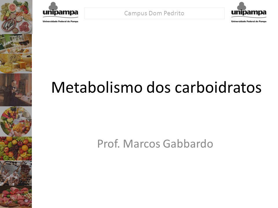 Campus Dom Pedrito Metabolismo dos carboidratos Prof. Marcos Gabbardo