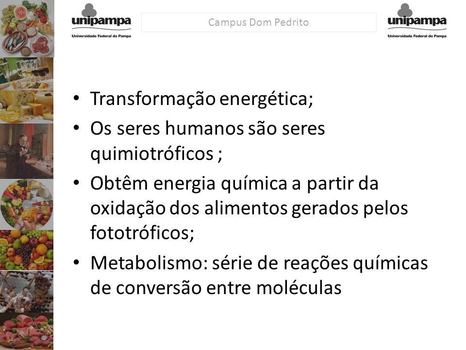 Campus Dom Pedrito Transformação energética; Os seres humanos são seres quimiotróficos ; Obtêm energia química a partir da oxidação dos alimentos gera