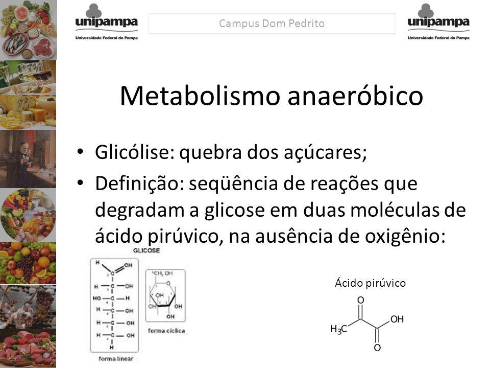 Campus Dom Pedrito Metabolismo anaeróbico Glicólise: quebra dos açúcares; Definição: seqüência de reações que degradam a glicose em duas moléculas de
