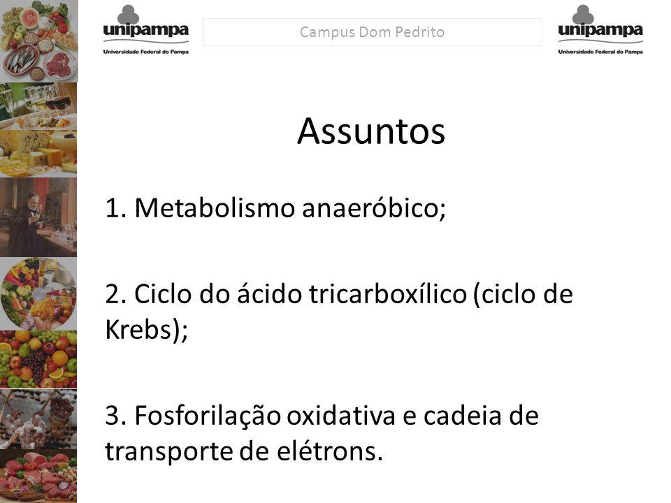 Campus Dom Pedrito Assuntos 1. Metabolismo anaeróbico; 2. Ciclo do ácido tricarboxílico (ciclo de Krebs); 3. Fosforilação oxidativa e cadeia de transp
