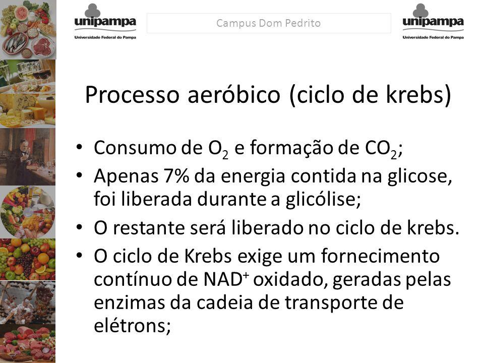 Campus Dom Pedrito Processo aeróbico (ciclo de krebs) Consumo de O 2 e formação de CO 2 ; Apenas 7% da energia contida na glicose, foi liberada durant