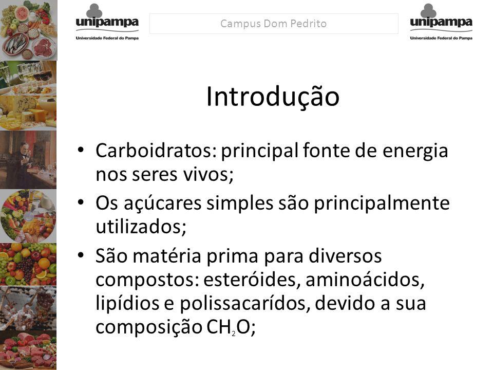 Campus Dom Pedrito Carboidratos: principal fonte de energia nos seres vivos; Os açúcares simples são principalmente utilizados; São matéria prima para