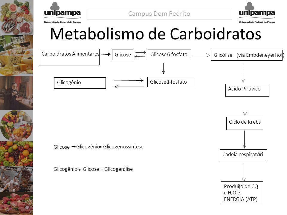 Carboidratos Alimentares Glicose -6-fosfato Glicose-1-fosfato Glicogênio Glicólise (via Embdeneyerhof) Ácido Pirúvico Ciclode Krebs Cadeia respiratóri