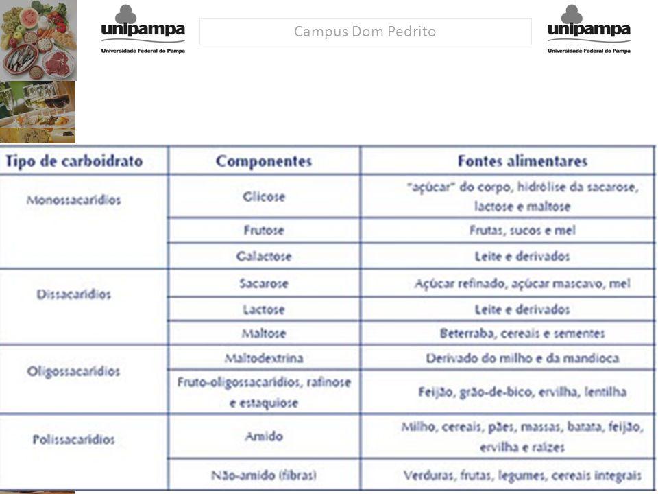 Campus Dom Pedrito