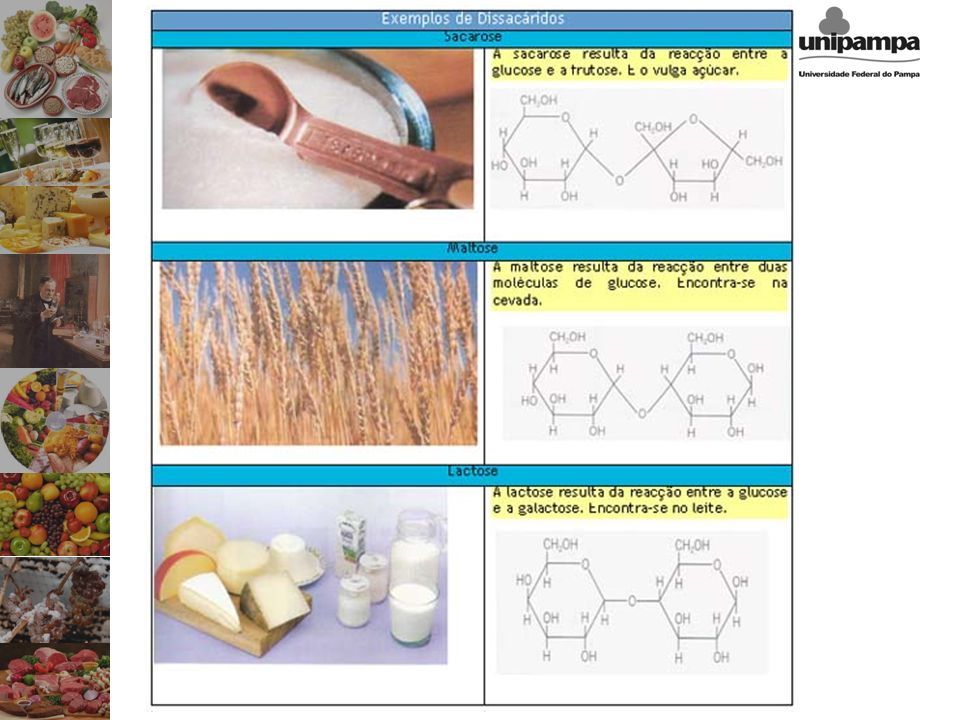 Celulose –O carboidrato mais abundante do planeta –Componente da parede celular de plantas –Humanos não digerem Amido –Molécula de armazenamento energético em plantas –Pode ser digerido por animais