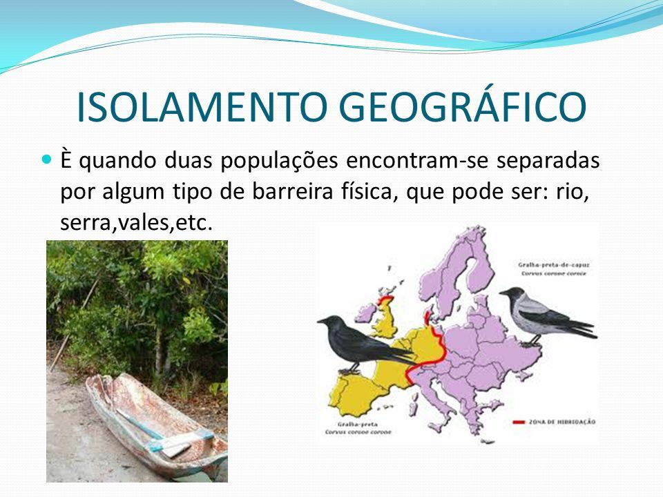 ISOLAMENTO GEOGRÁFICO È quando duas populações encontram-se separadas por algum tipo de barreira física, que pode ser: rio, serra,vales,etc.