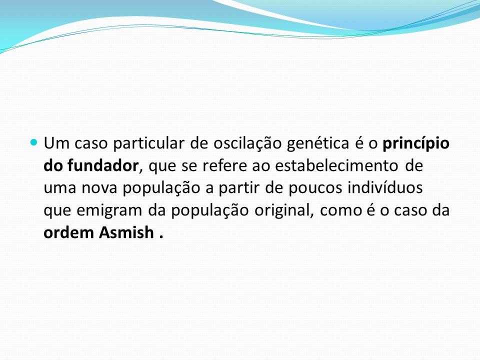 Um caso particular de oscilação genética é o princípio do fundador, que se refere ao estabelecimento de uma nova população a partir de poucos indivíduos que emigram da população original, como é o caso da ordem Asmish.
