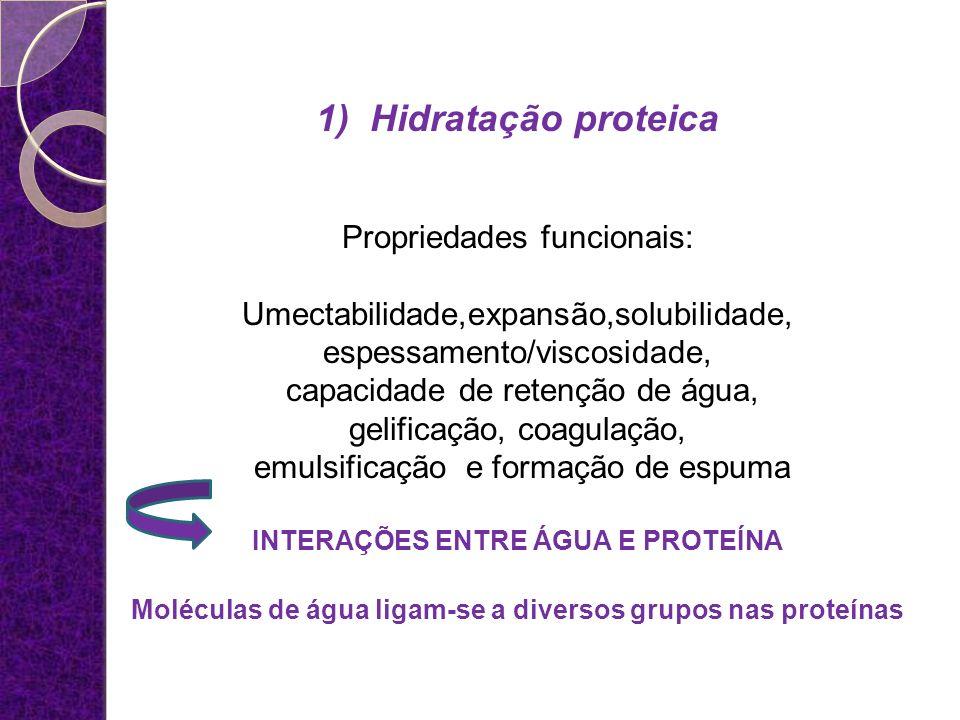 1) Hidratação proteica Propriedades funcionais: Umectabilidade,expansão,solubilidade, espessamento/viscosidade, capacidade de retenção de água, gelifi