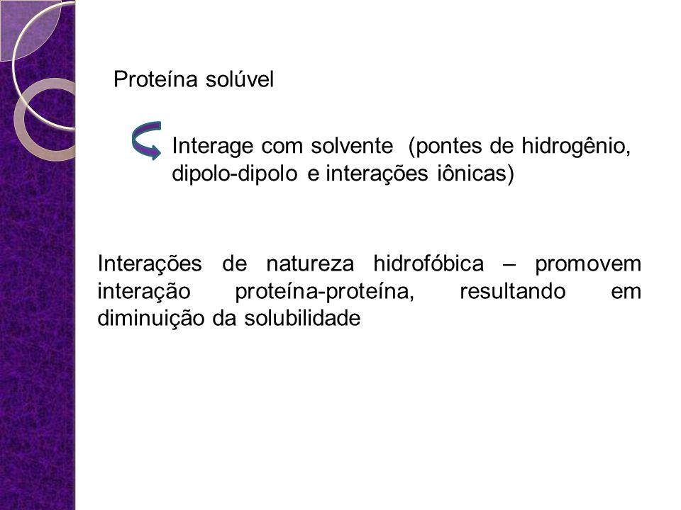 Proteína solúvel Interage com solvente (pontes de hidrogênio, dipolo-dipolo e interações iônicas) Interações de natureza hidrofóbica – promovem intera