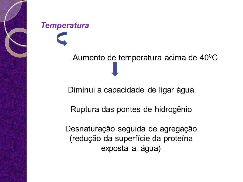 Temperatura Aumento de temperatura acima de 40 0 C Diminui a capacidade de ligar água Ruptura das pontes de hidrogênio Desnaturação seguida de agregaç