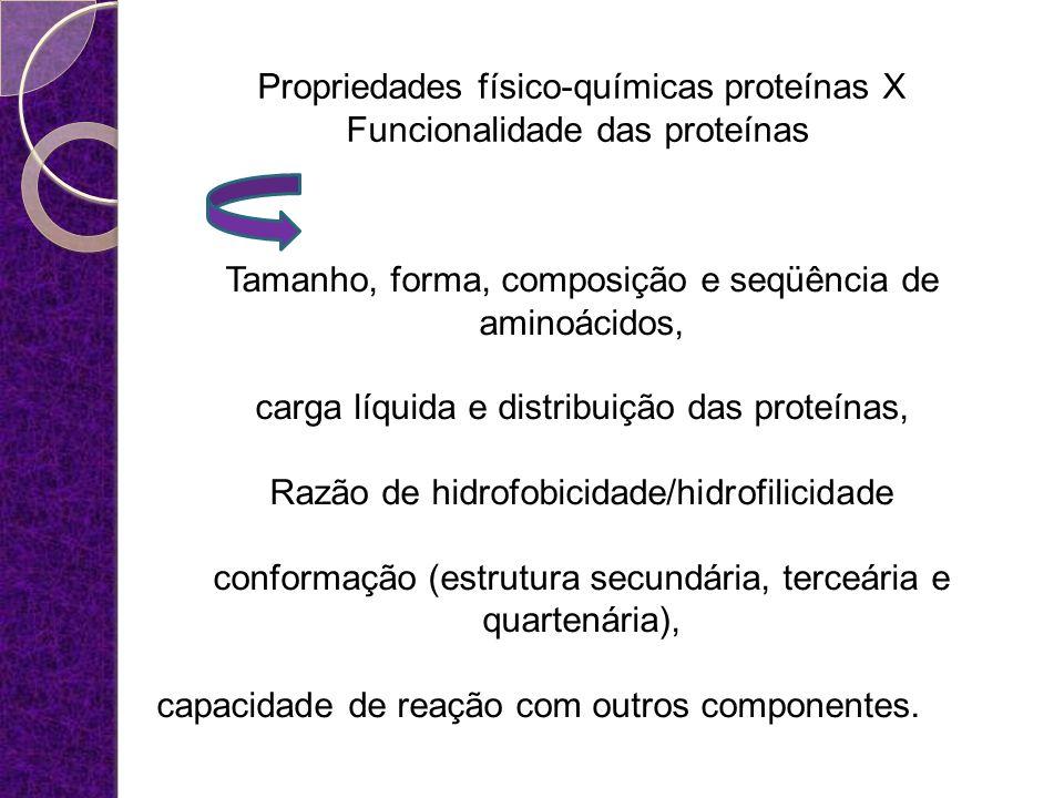 Propriedades físico-químicas proteínas X Funcionalidade das proteínas Tamanho, forma, composição e seqüência de aminoácidos, carga líquida e distribui