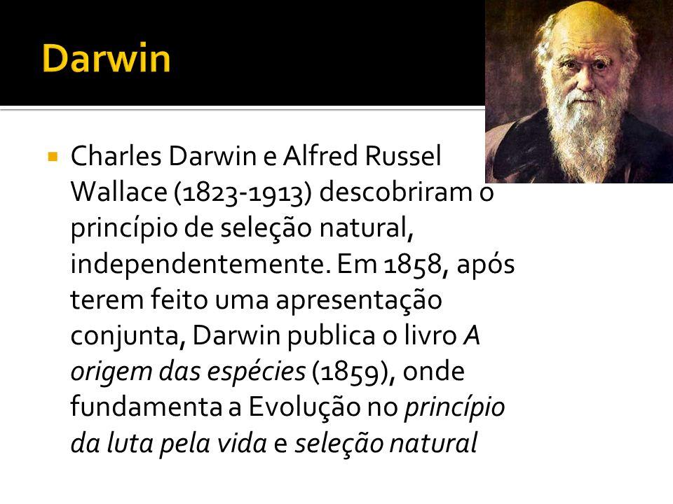 Charles Darwin e Alfred Russel Wallace (1823-1913) descobriram o princípio de seleção natural, independentemente. Em 1858, após terem feito uma aprese