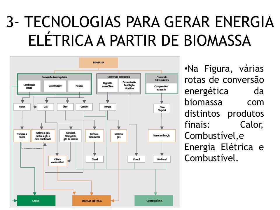 3- TECNOLOGIAS PARA GERAR ENERGIA ELÉTRICA A PARTIR DE BIOMASSA Na Figura, várias rotas de conversão energética da biomassa com distintos produtos fin