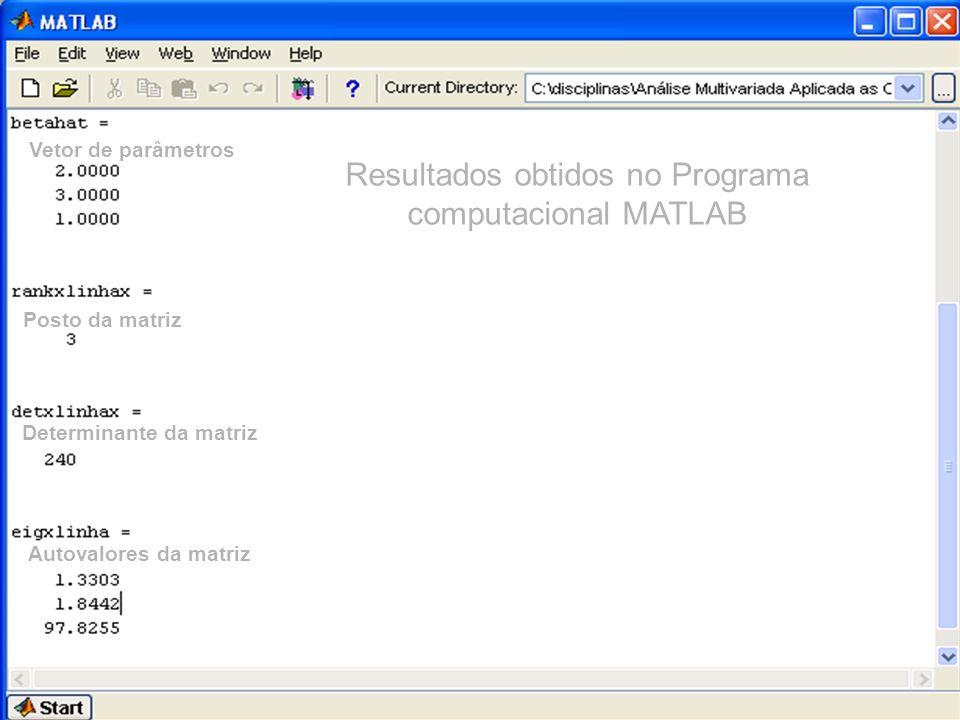 Resultados obtidos no Programa computacional MATLAB Vetor de parâmetros Posto da matriz Determinante da matriz Autovalores da matriz