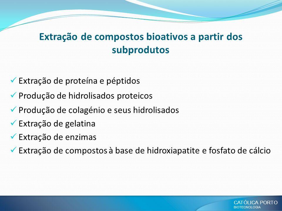 CATÓLICA PORTO BIOTECNOLOGIA Extração de compostos bioativos a partir dos subprodutos Extração de proteína e péptidos Produção de hidrolisados proteic