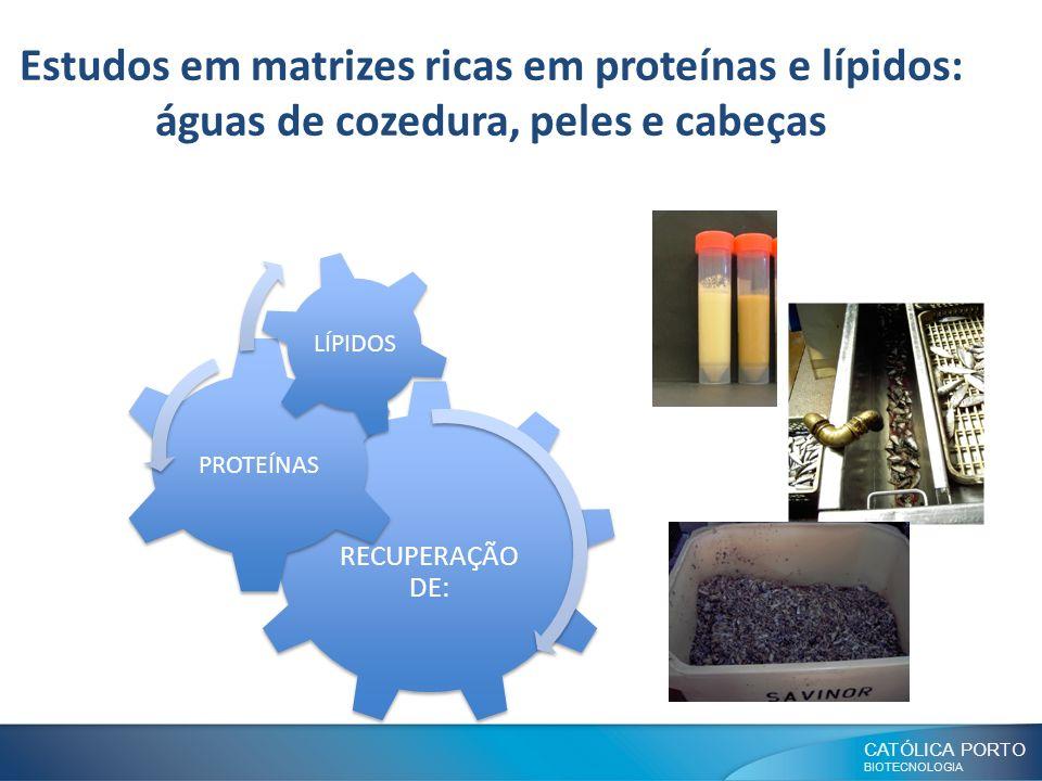 CATÓLICA PORTO BIOTECNOLOGIA Estudos em matrizes ricas em proteínas e lípidos: águas de cozedura, peles e cabeças RECUPERAÇÃO DE: PROTEÍNAS LÍPIDOS