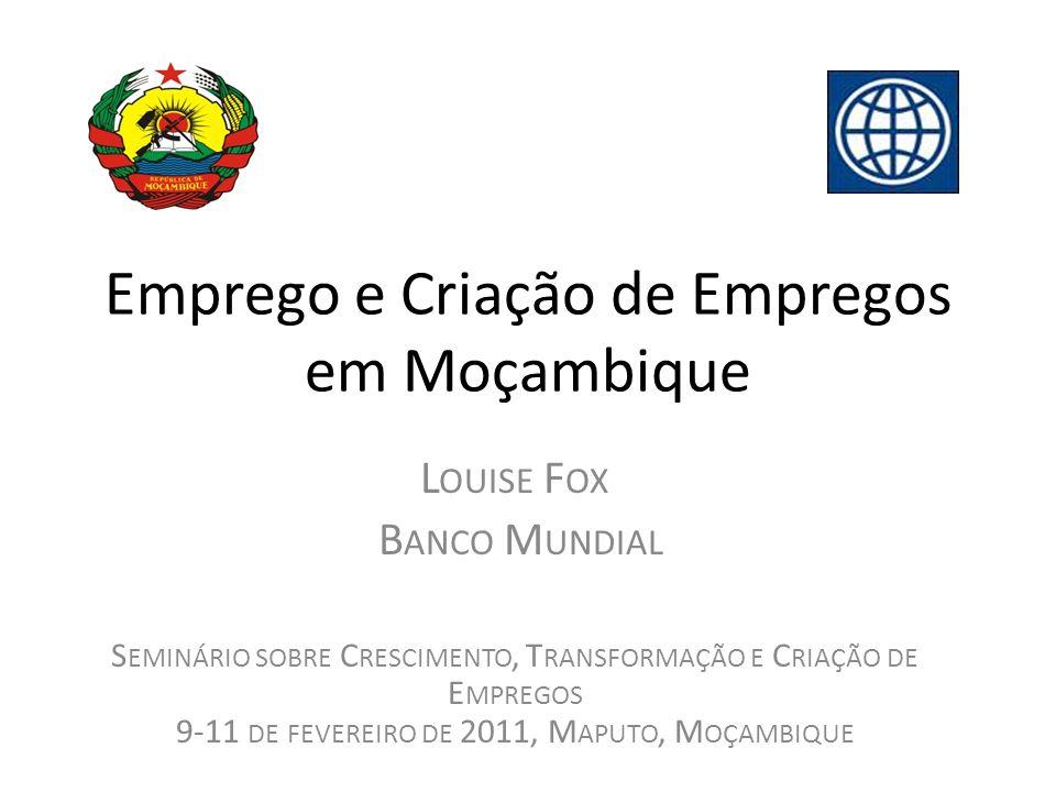 Emprego e Criação de Empregos em Moçambique L OUISE F OX B ANCO M UNDIAL S EMINÁRIO SOBRE C RESCIMENTO, T RANSFORMAÇÃO E C RIAÇÃO DE E MPREGOS 9-11 DE FEVEREIRO DE 2011, M APUTO, M OÇAMBIQUE