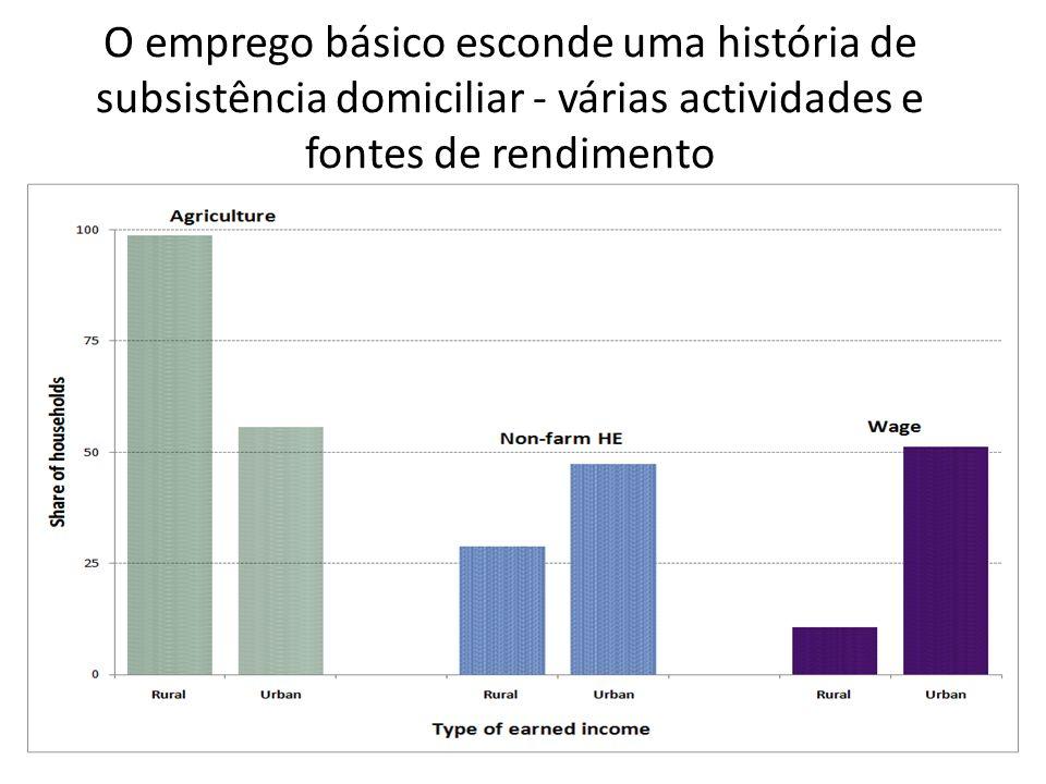 O emprego básico esconde uma história de subsistência domiciliar - várias actividades e fontes de rendimento