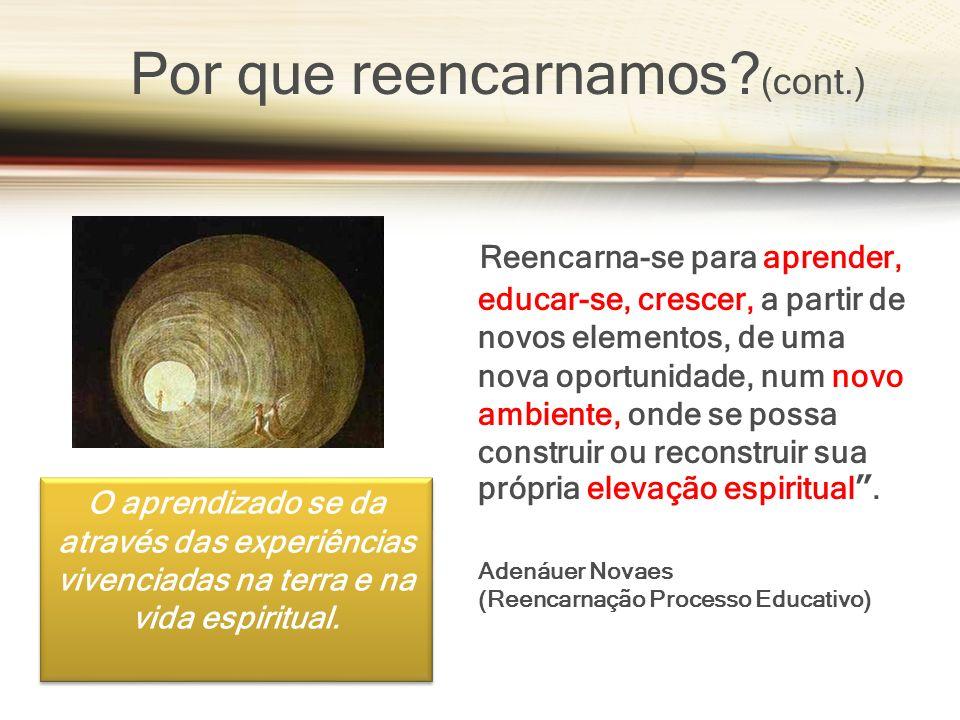 Reencarna-se para aprender, educar-se, crescer, a partir de novos elementos, de uma nova oportunidade, num novo ambiente, onde se possa construir ou r