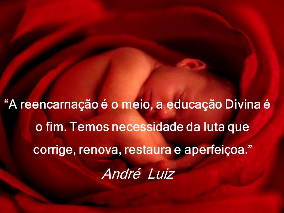A reencarnação é o meio, a educação Divina é o fim. Temos necessidade da luta que corrige, renova, restaura e aperfeiçoa. André Luiz