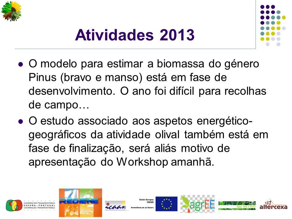 Atividades 2013 O modelo para estimar a biomassa do género Pinus (bravo e manso) está em fase de desenvolvimento.