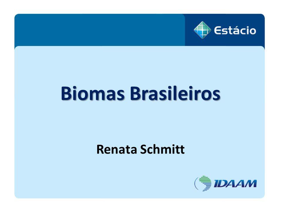 BIOMA Bioma, ou formação planta - animal, deve ser entendido como a unidade biótica de maior extensão geográfica, compreendendo varias comunidades em diferentes estágios de evolução, porém denominada de acordo com o tipo de vegetação dominante.