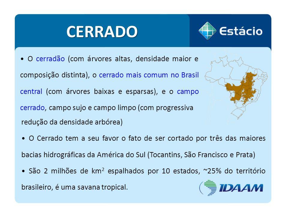 O cerradão (com árvores altas, densidade maior e composição distinta), o cerrado mais comum no Brasil central (com árvores baixas e esparsas), e o cam