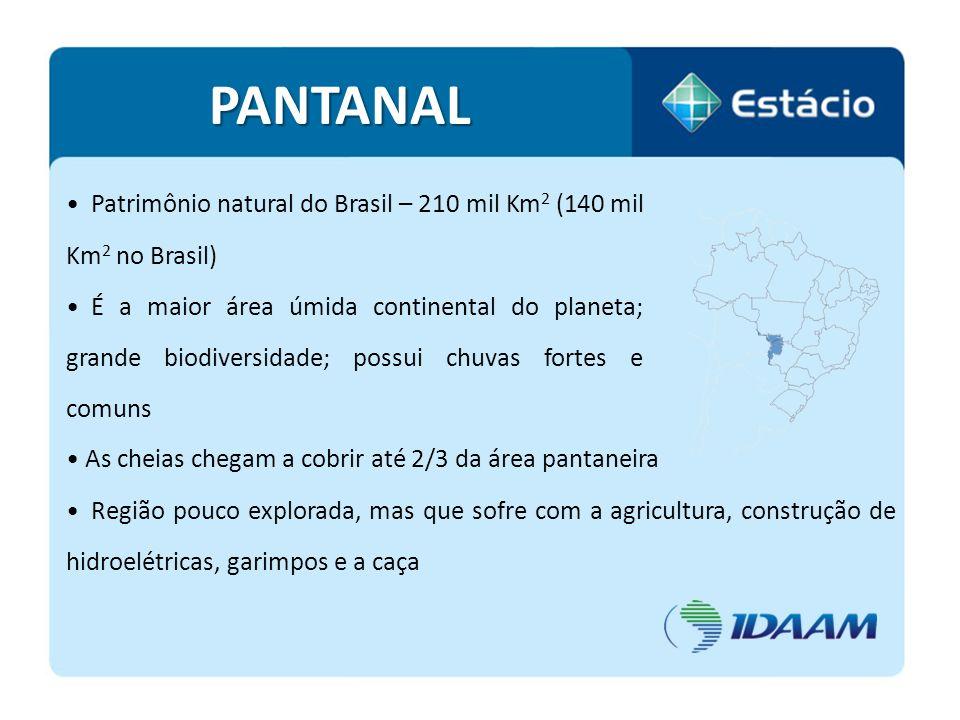 Patrimônio natural do Brasil – 210 mil Km 2 (140 mil Km 2 no Brasil) É a maior área úmida continental do planeta; grande biodiversidade; possui chuvas