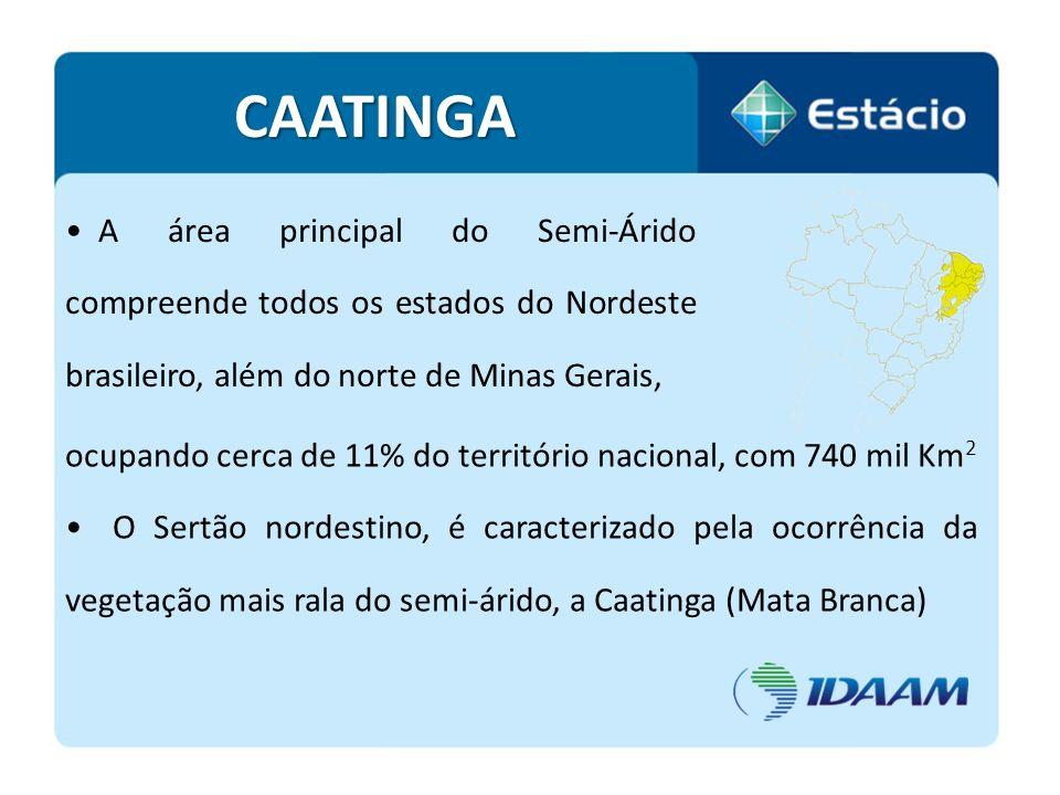 A área principal do Semi-Árido compreende todos os estados do Nordeste brasileiro, além do norte de Minas Gerais, CAATINGA ocupando cerca de 11% do te