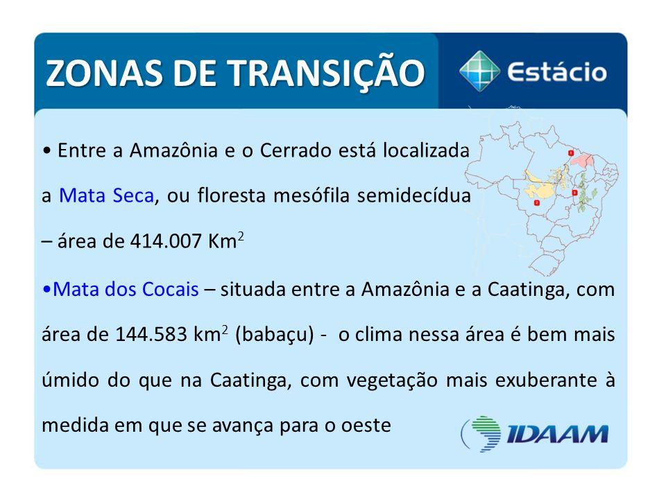 Entre a Amazônia e o Cerrado está localizada a Mata Seca, ou floresta mesófila semidecídua – área de 414.007 Km 2 ZONAS DE TRANSIÇÃO Mata dos Cocais –