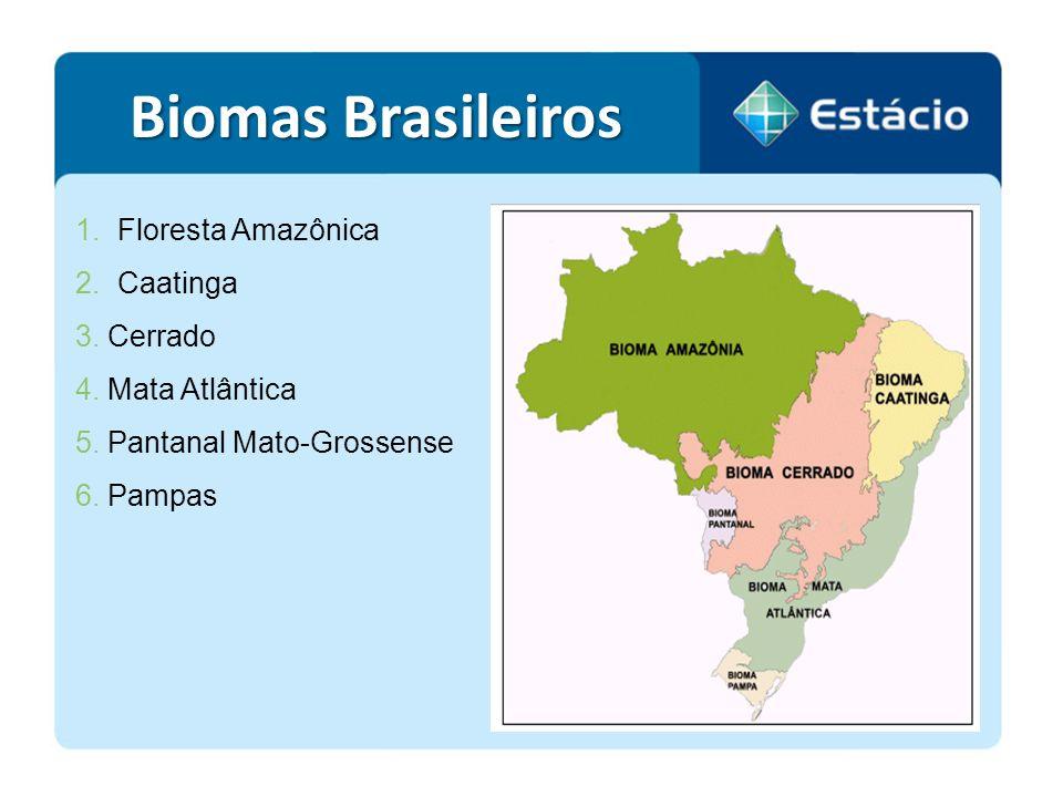 1.Floresta Amazônica 2.Caatinga 3. Cerrado 4. Mata Atlântica 5. Pantanal Mato-Grossense 6. Pampas Biomas Brasileiros
