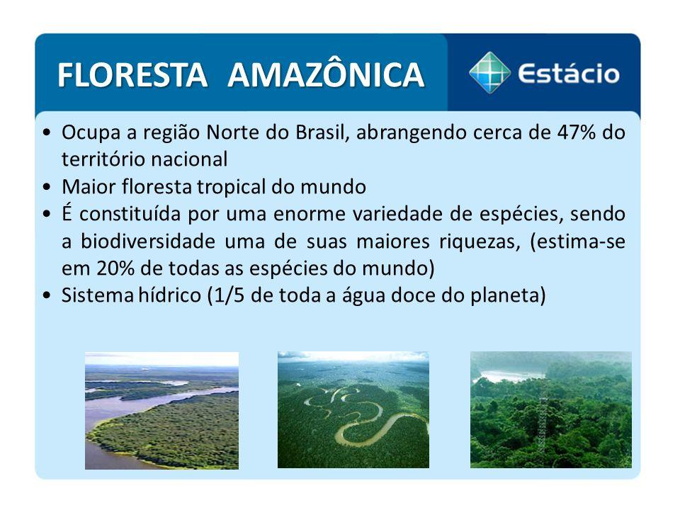 A Amazônia constitui a maior bacia hidrográfica do mundo com 1.100 afluentes - cobre uma extensão aproximada de 6 milhões de km 2 Rio Amazonas lança no mar, por segundo, cerca de 175 milhões de litros de água A Amazônia é, também, a principal fonte de madeira de florestas nativas do Brasil.