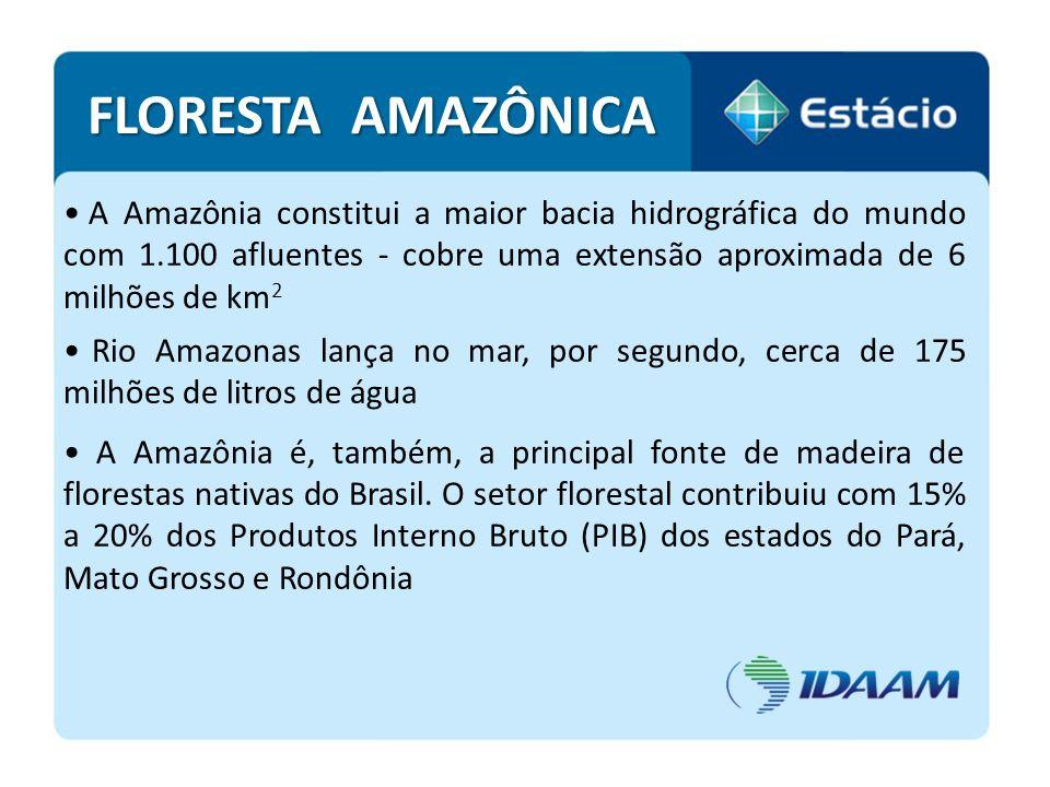 A Amazônia constitui a maior bacia hidrográfica do mundo com 1.100 afluentes - cobre uma extensão aproximada de 6 milhões de km 2 Rio Amazonas lança n