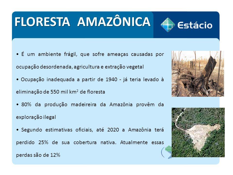 ZONAS COSTEIRAS O Amapá conta com uma das maiores áreas costeiras do país (12,3% do total) e o Piauí detém a menor área (0,2% do total) A densidade demográfica média da Zona Costeira é de 87 hab/km², cinco vezes superior à média nacional, de 17 hab/km²