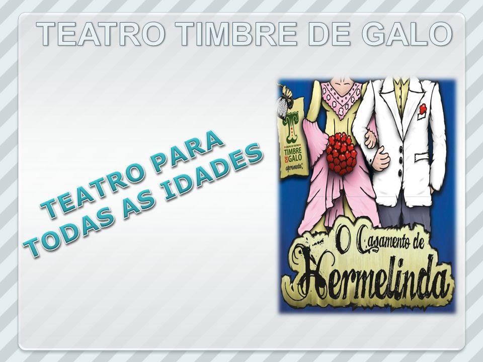 EDUCAR PRODUÇÕES CULTURAIS LTDA, empresa estabelecida na Rua Guaporé, nº 70, bairro Vera Cruz em Passo Fundo/RS.