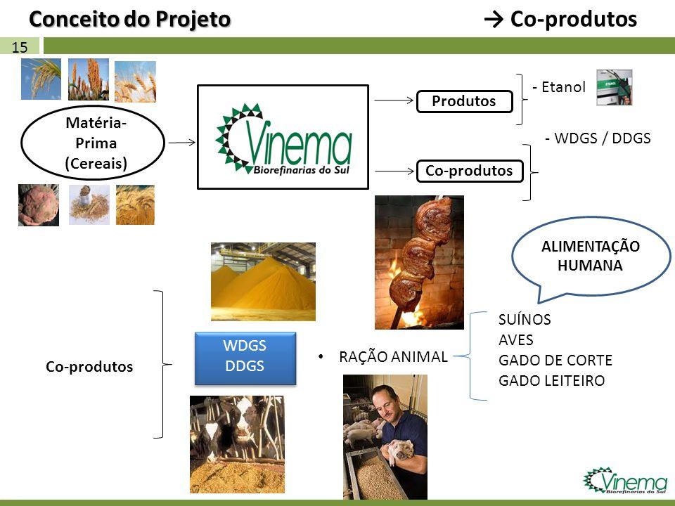 15 Matéria- Prima (Cereais) Co-produtos Conceito do Projeto Conceito do Projeto Co-produtos - Etanol Produtos WDGS DDGS WDGS DDGS RAÇÃO ANIMAL SUÍNOS