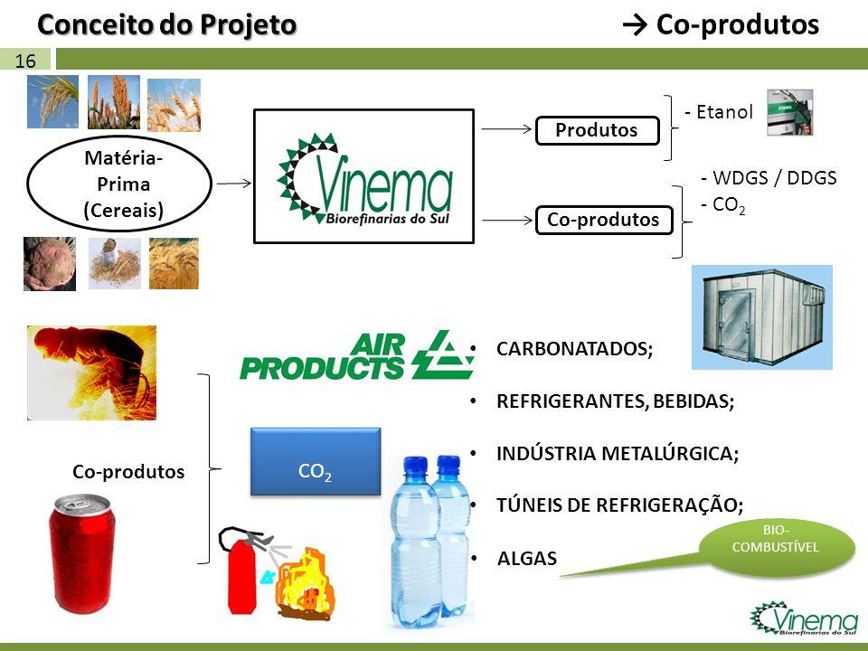 16 Matéria- Prima (Cereais) Co-produtos Conceito do Projeto Conceito do Projeto Co-produtos - Etanol Produtos Co-produtos CO 2 CARBONATADOS; REFRIGERA