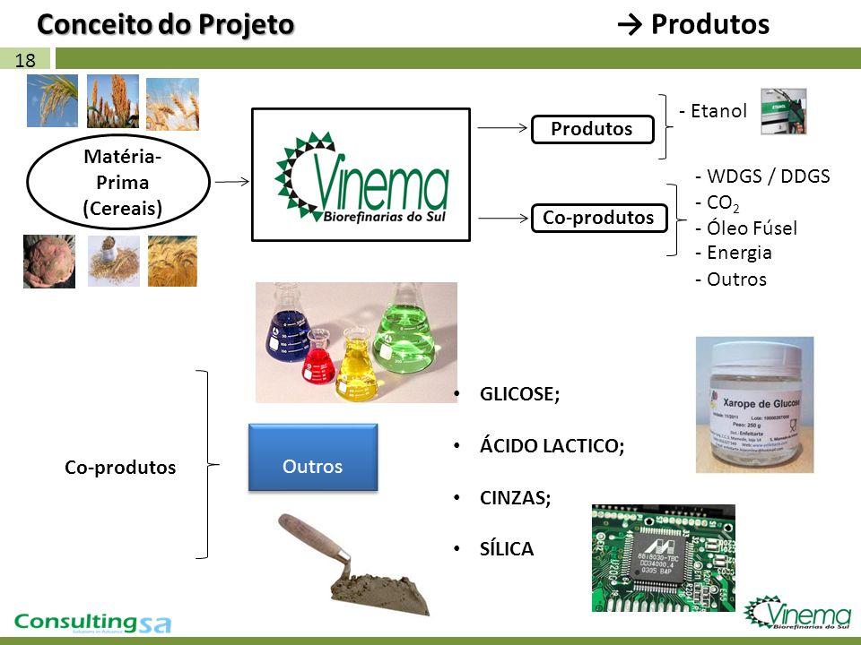 18 Matéria- Prima (Cereais) Conceito do Projeto Conceito do Projeto Produtos - Etanol Produtos - WDGS / DDGS Co-produtos Outros - CO 2 - Óleo Fúsel -
