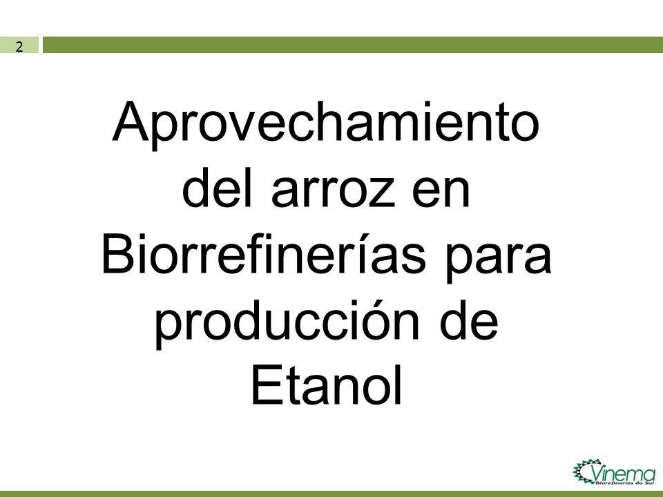33 Biorrefinarias na Argentina (11/09/2012) Fonte: http://biodiesel.com.ar/7002/etanol-argentina-invertiran-1500-millones-de-dolares-en-plantas-de-etanol-de-maiz Combustible Verde EmpresaLocal Início Operações Capacidade Instalada (m3) Milho Processado (ton) Bio IV set/1280.000186.047 AgroctanosLa Carlota201480.000186.047 PortaCórdobajan/1250.000116.279 Las LajitasSaltasem data50.000116.279 ACAAlejandro Rocadez/13125.000290.698 AGD jan/13135.000313.953 Vicentin ago/1250.000116.279 Alimentos Del SurRios201480.000186.047 DiaserSan Luis201480.000186.047 Bahia Energ.