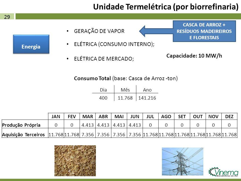 29 Unidade Termelétrica (por biorrefinaria) Energia ELÉTRICA (CONSUMO INTERNO); ELÉTRICA DE MERCADO; CASCA DE ARROZ + RESÍDUOS MADEIREIROS E FLORESTAI