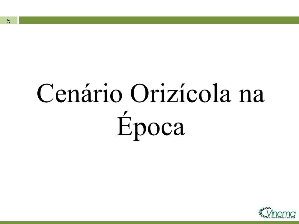 5 Cenário Orizícola na Época