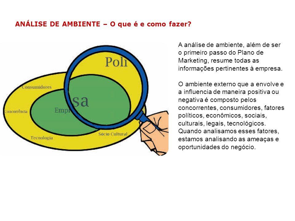 ANÁLISE DE AMBIENTE – Exemplo Ana Maria dispunha, atualmente, de um público variado, entre eles, 10% crianças, 10% adolescentes, 50% adultos e 30% idosos.