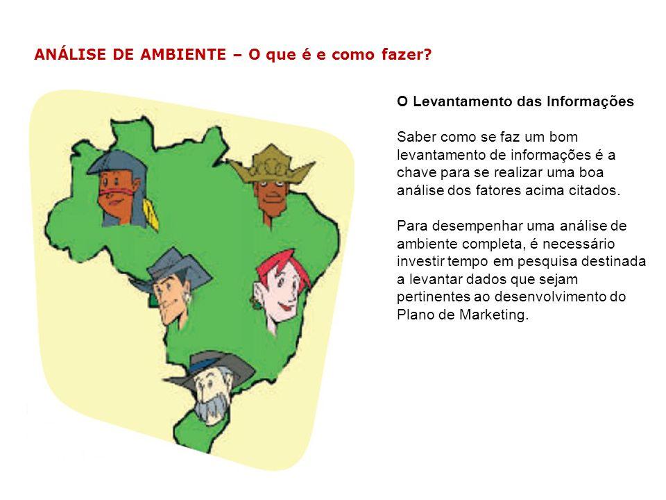 ANÁLISE DE AMBIENTE – Exemplo Ana Maria, preocupada com os seus resultados, iniciou a análise do ambiente da sua empresa.