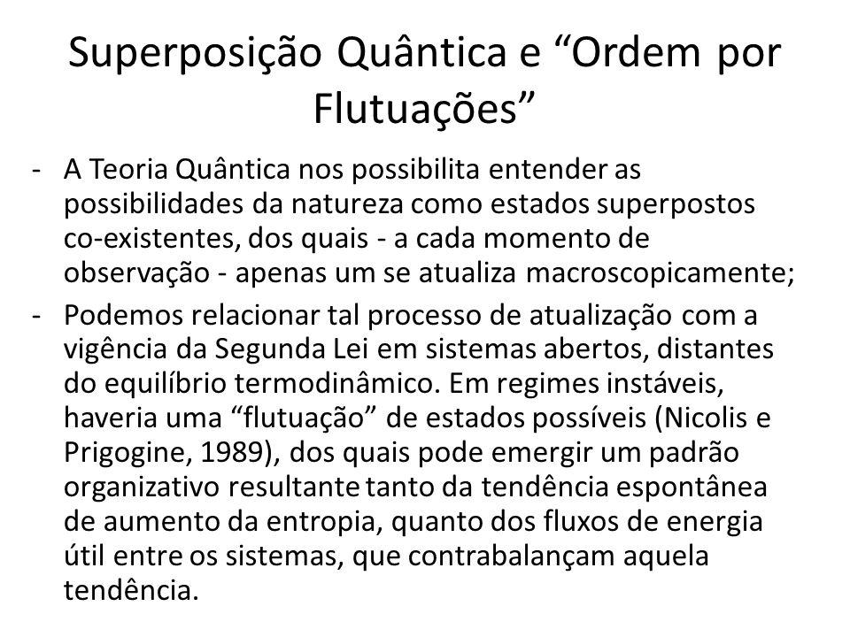 Superposição Quântica e Ordem por Flutuações -A Teoria Quântica nos possibilita entender as possibilidades da natureza como estados superpostos co-exi