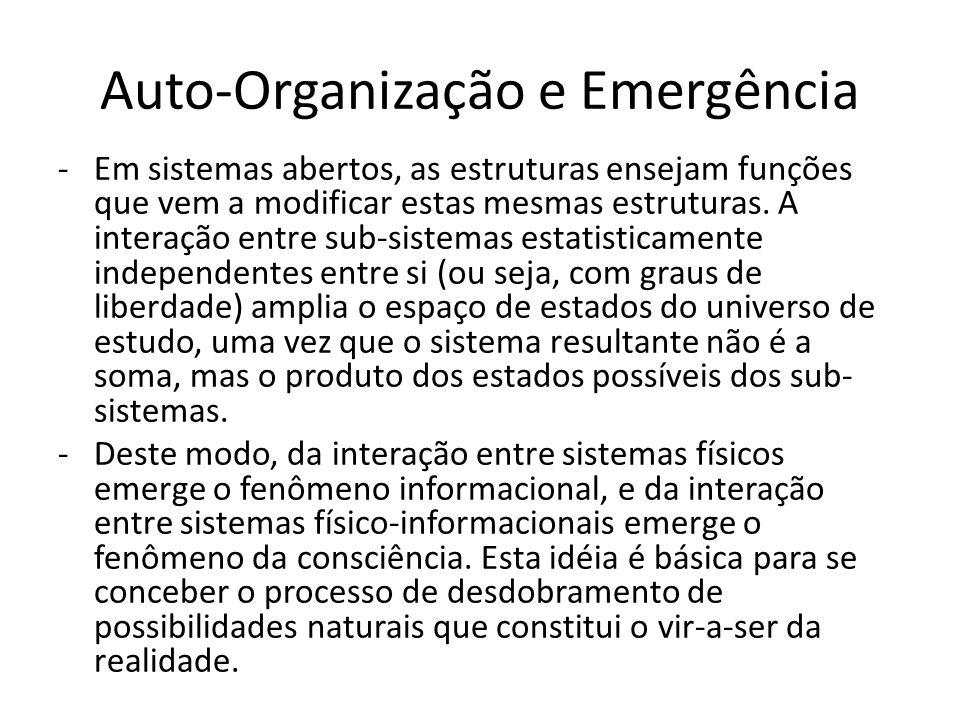 Auto-Organização e Emergência -Em sistemas abertos, as estruturas ensejam funções que vem a modificar estas mesmas estruturas. A interação entre sub-s