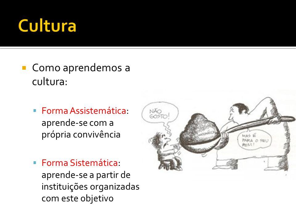 Como aprendemos a cultura: Forma Assistemática: aprende-se com a própria convivência Forma Sistemática: aprende-se a partir de instituições organizada