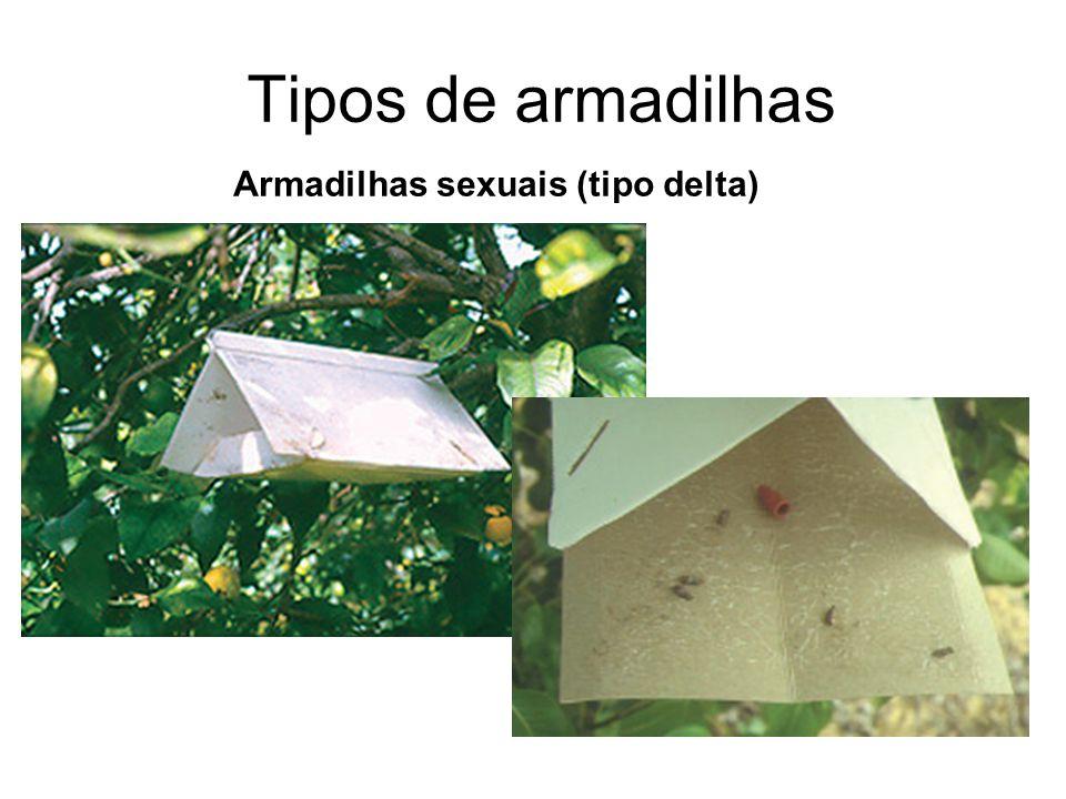 Tipos de armadilhas Armadilhas sexuais (tipo delta)