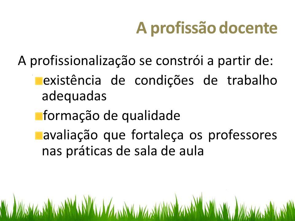 A profissão docente A profissionalização se constrói a partir de: existência de condições de trabalho adequadas formação de qualidade avaliação que fortaleça os professores nas práticas de sala de aula