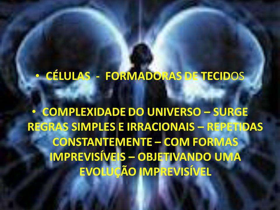 CÉLULAS - FORMADORAS DE TECIDOS COMPLEXIDADE DO UNIVERSO – SURGE REGRAS SIMPLES E IRRACIONAIS – REPETIDAS CONSTANTEMENTE – COM FORMAS IMPREVISÍVEIS –