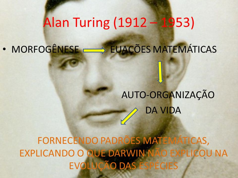 Alan Turing (1912 – 1953) MORFOGÊNESE EUAÇÕES MATEMÁTICAS AUTO-ORGANIZAÇÃO DA VIDA FORNECENDO PADRÕES MATEMÁTICAS, EXPLICANDO O QUE DARWIN NÃO EXPLICO